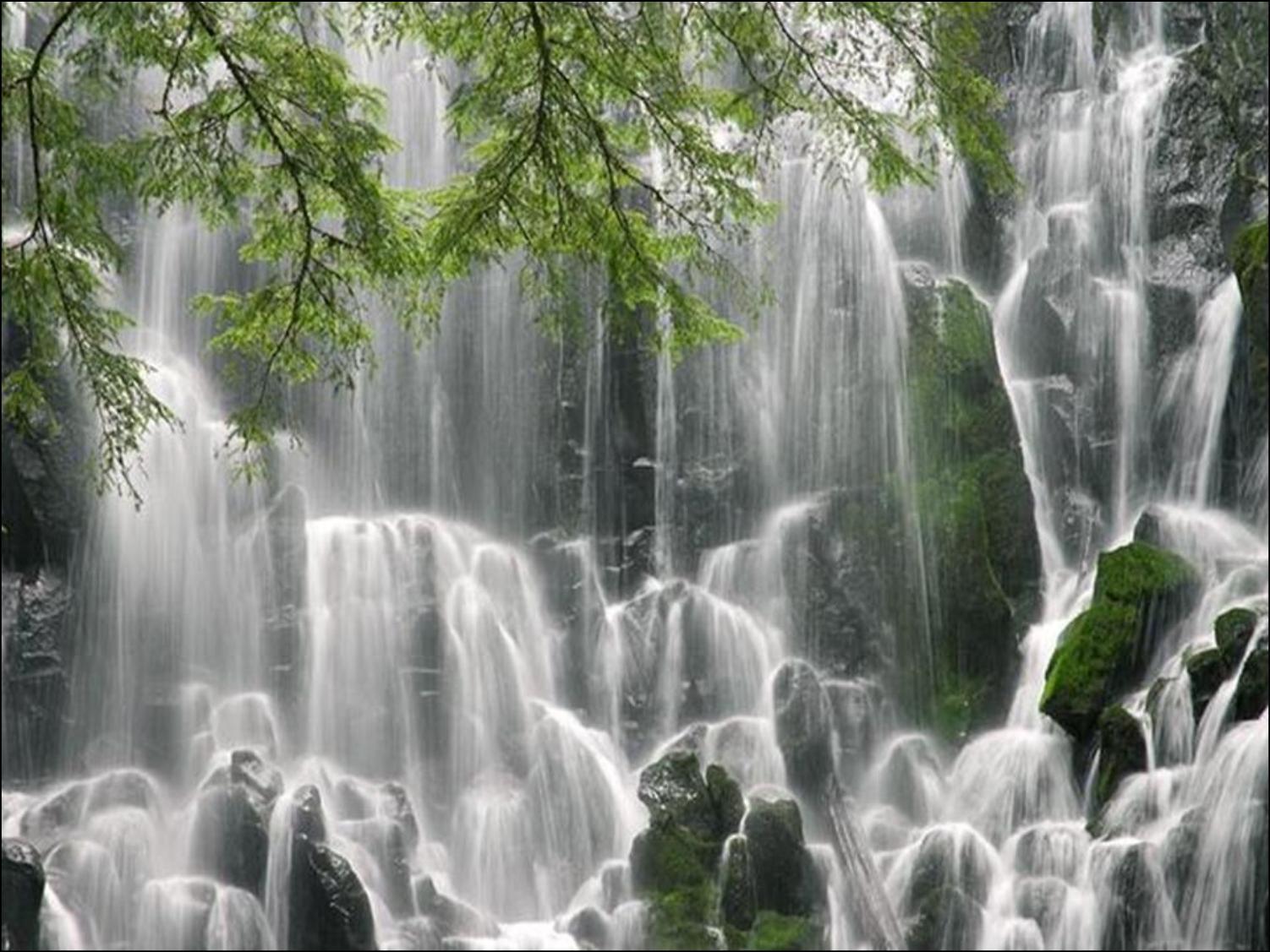 Que la nature est belle ! ... dans Belles images ecs2ty46